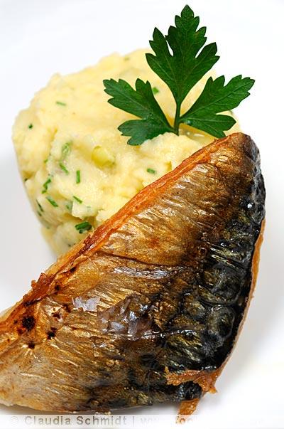 Makrele mit Kartoffelpüree