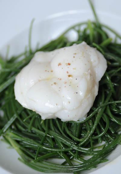 Rezept mit Bild für Mönchsbart mit Seeteufel