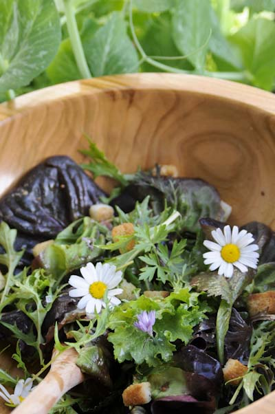 Rezept mit Bild für Pflücksalat mit Senf-Vinaigrette